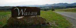 Waiau Domain Board